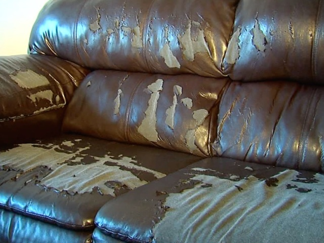 Reblog Woman S Leather Couch A Fake Despite Sales Pitch Bonded